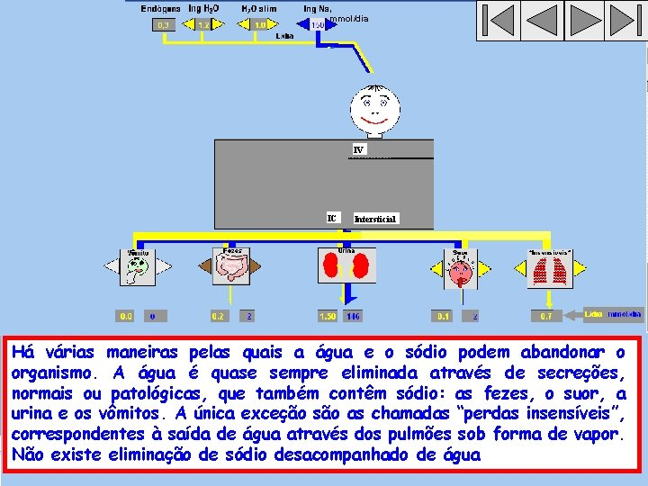 , mmol/dia IV IC Intersticial Há várias maneiras pelas quais a água e o