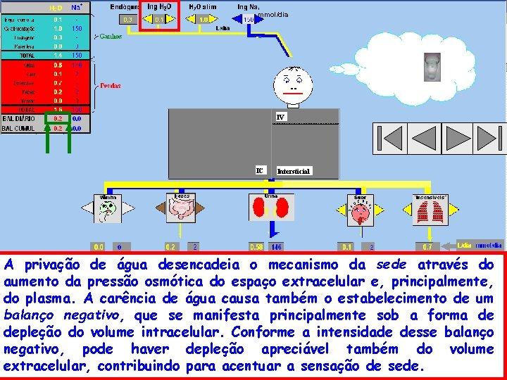 , mmol/dia IV IC Intersticial A privação de água desencadeia o mecanismo da sede