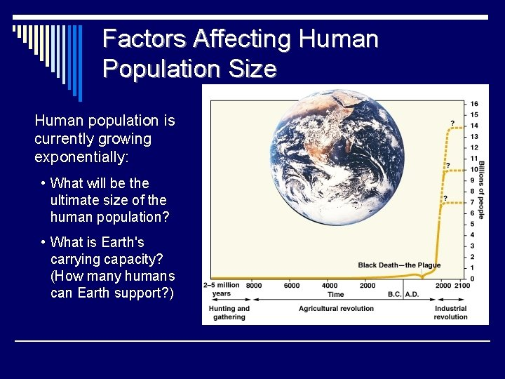 Factors Affecting Human Population Size Human population is currently growing exponentially: • What will