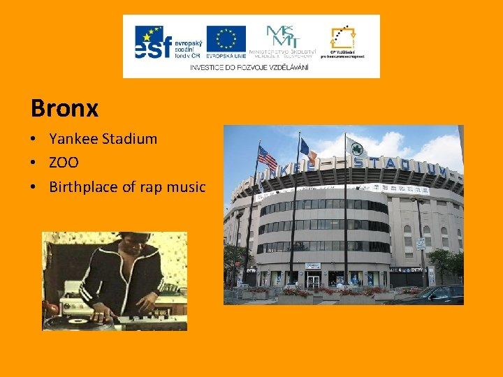 Bronx • Yankee Stadium • ZOO • Birthplace of rap music