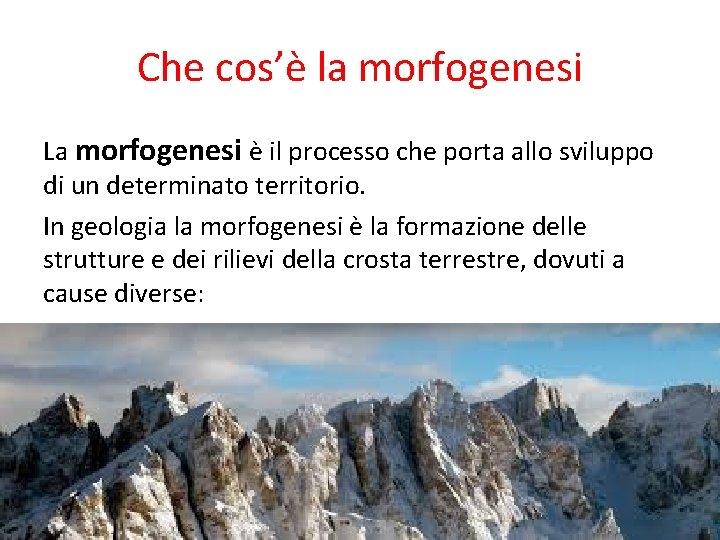 Che cos'è la morfogenesi La morfogenesi è il processo che porta allo sviluppo di