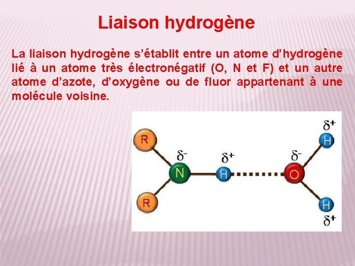 Liaison hydrogène La liaison hydrogène s'établit entre un atome d'hydrogène lié à un atome