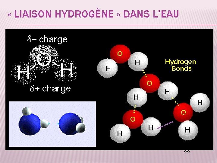 « LIAISON HYDROGÈNE » DANS L'EAU 33
