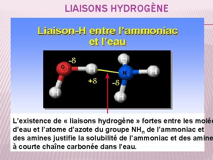 LIAISONS HYDROGÈNE O N L'existence de « liaisons hydrogène » fortes entre les moléc