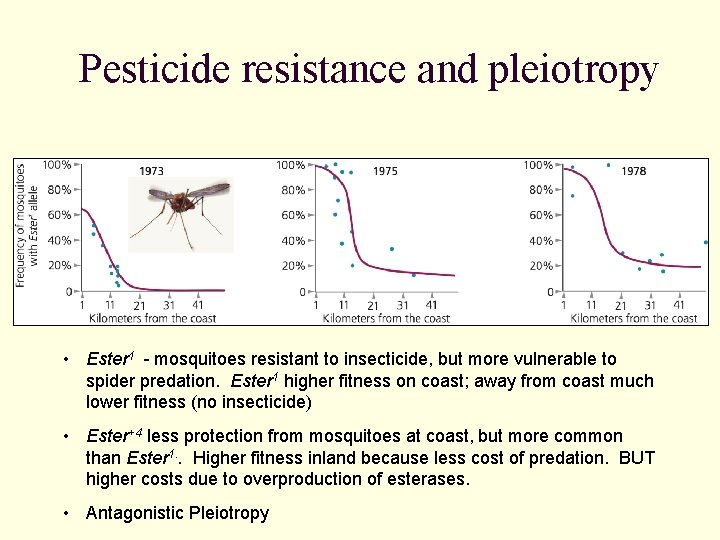 Pesticide resistance and pleiotropy • Ester 1 - mosquitoes resistant to insecticide, but more