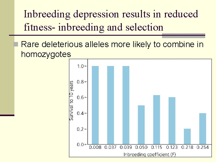 Inbreeding depression results in reduced fitness- inbreeding and selection n Rare deleterious alleles more