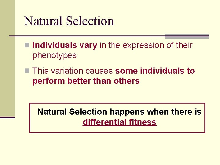 Natural Selection n Individuals vary in the expression of their phenotypes n This variation