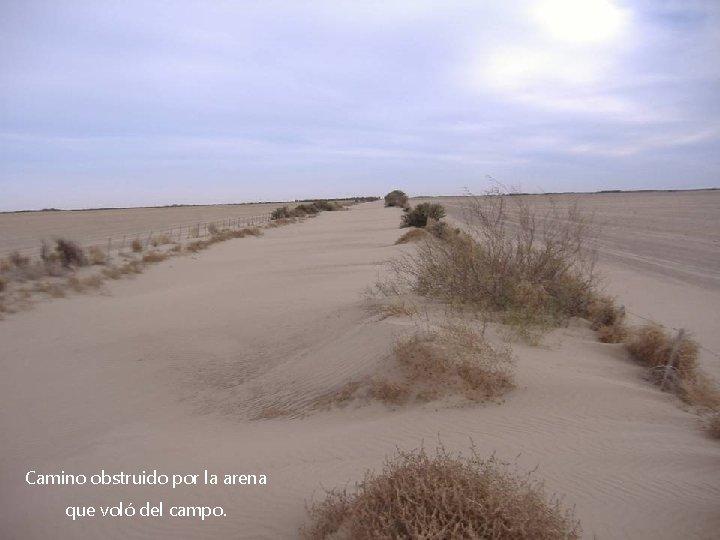 Camino obstruido por la arena que voló del campo.