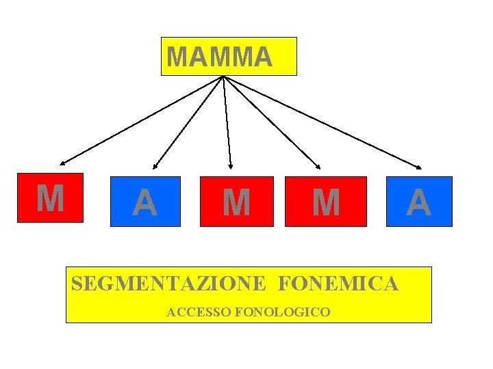 MAMMA M M SEGMENTAZIONE FONEMICA ACCESSO FONOLOGICO A