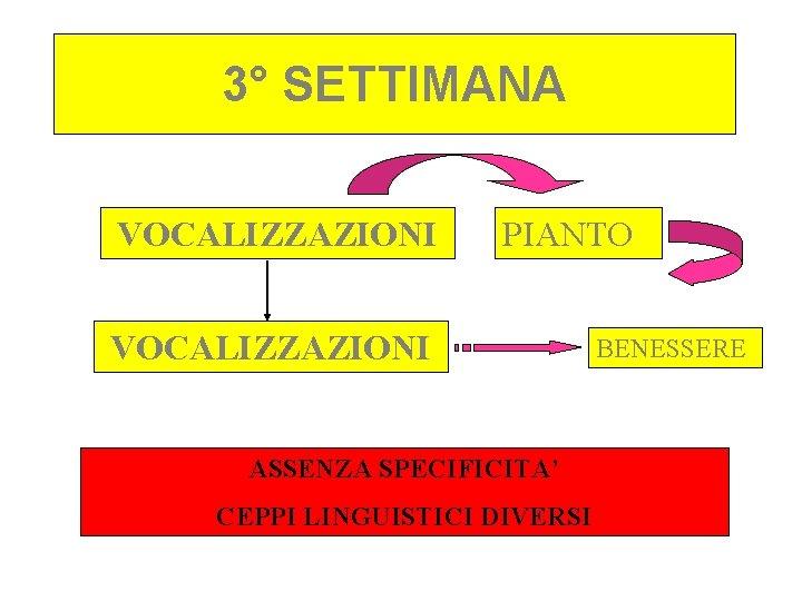 3° SETTIMANA VOCALIZZAZIONI PIANTO VOCALIZZAZIONI ASSENZA SPECIFICITA' CEPPI LINGUISTICI DIVERSI BENESSERE