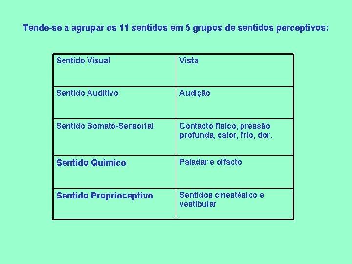 Tende-se a agrupar os 11 sentidos em 5 grupos de sentidos perceptivos: Sentido Visual