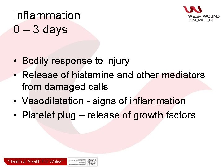 Inflammation 0 – 3 days • Bodily response to injury • Release of histamine