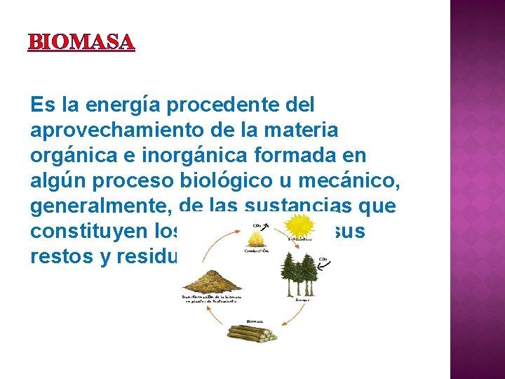 BIOMASA Es la energía procedente del aprovechamiento de la materia orgánica e inorgánica formada