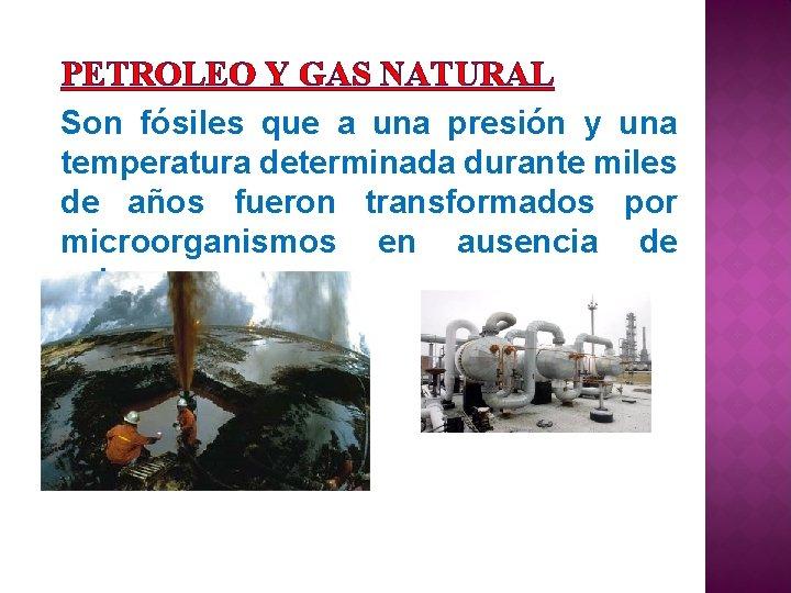 PETROLEO Y GAS NATURAL Son fósiles que a una presión y una temperatura determinada