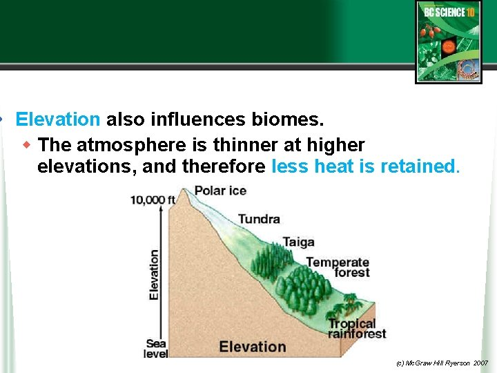• Elevation also influences biomes. w The atmosphere is thinner at higher elevations,