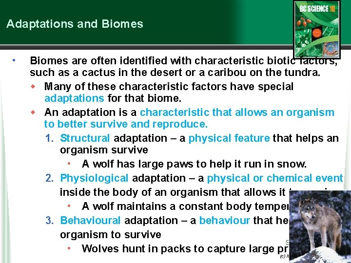 Adaptations and Biomes • Biomes are often identified with characteristic biotic factors, such as