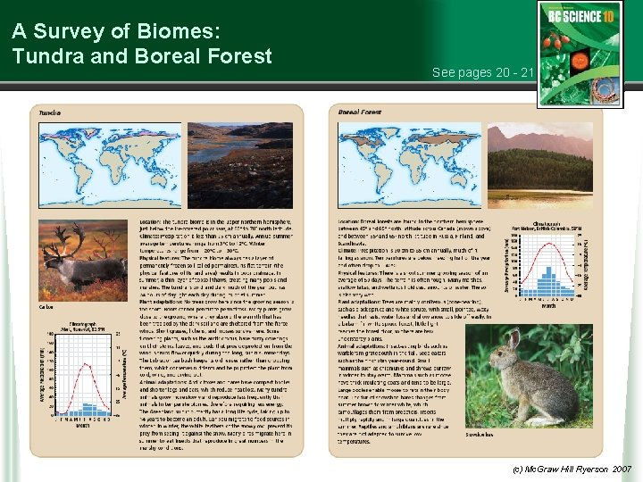 A Survey of Biomes: Tundra and Boreal Forest See pages 20 - 21 (c)