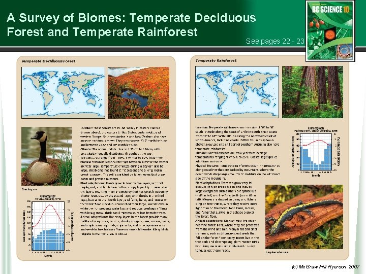 A Survey of Biomes: Temperate Deciduous Forest and Temperate Rainforest See pages 22 -
