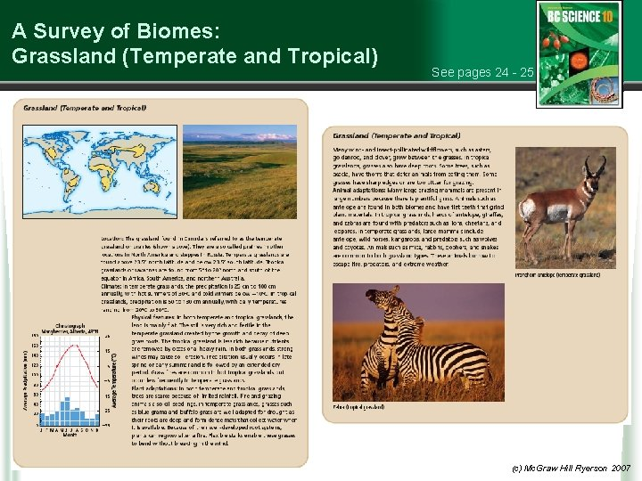 A Survey of Biomes: Grassland (Temperate and Tropical) See pages 24 - 25 (c)
