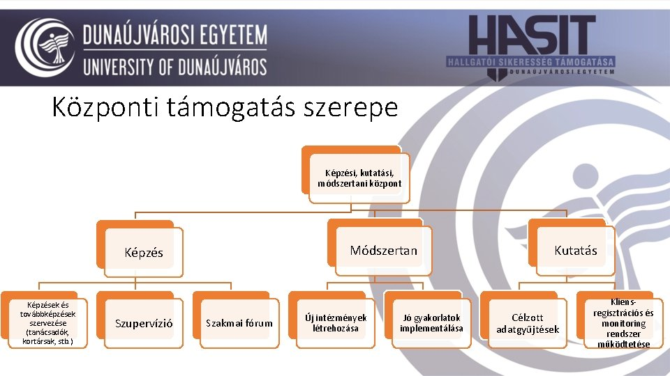Központi támogatás szerepe Képzési, kutatási, módszertani központ Módszertan Képzések és továbbképzések szervezése (tanácsadók, kortársak,