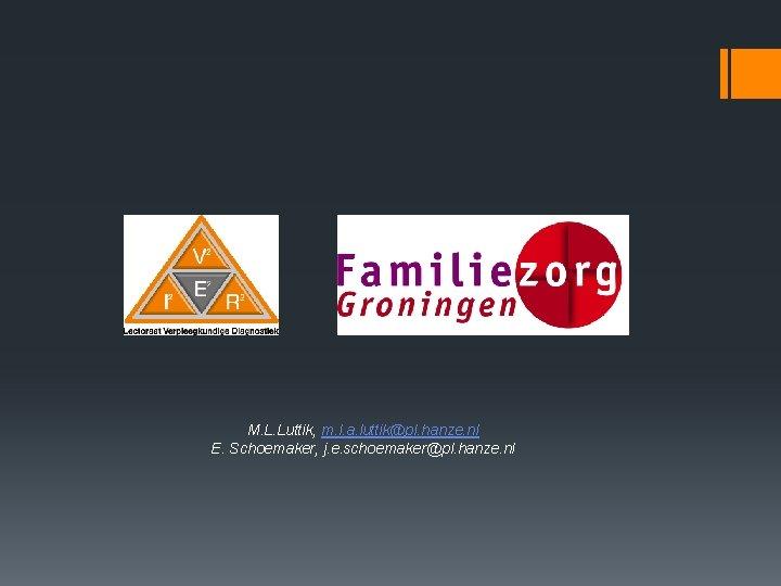 M. L. Luttik, m. l. a. luttik@pl. hanze. nl E. Schoemaker, j. e. schoemaker@pl.