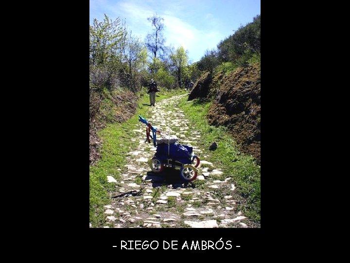 - RIEGO DE AMBRÓS -