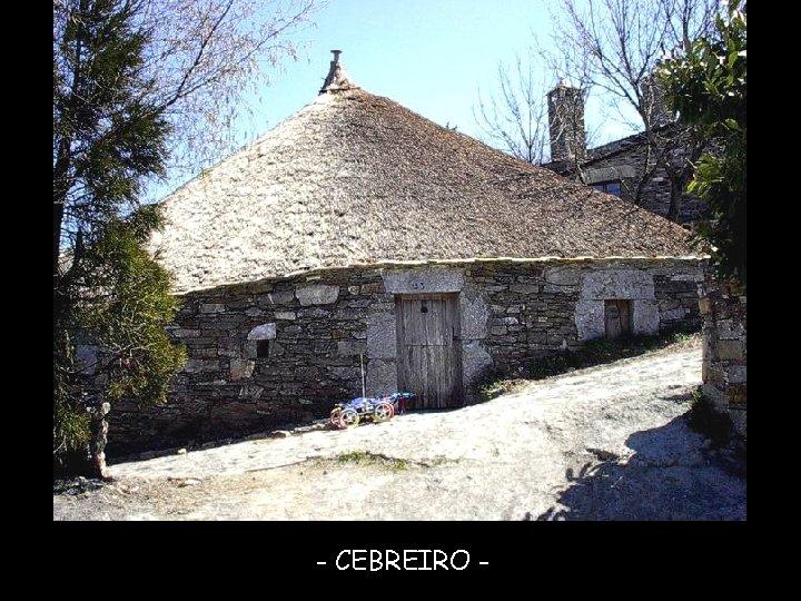 - CEBREIRO -