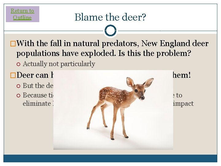 Return to Outline Blame the deer? �With the fall in natural predators, New England