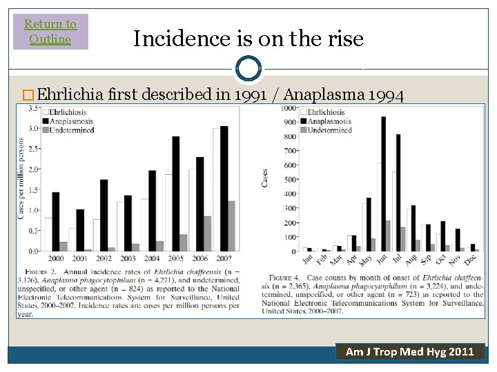 Return to Outline Incidence is on the rise � Ehrlichia first described in 1991