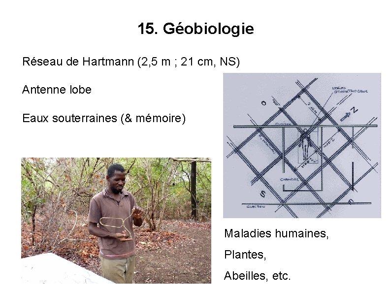 15. Géobiologie Réseau de Hartmann (2, 5 m ; 21 cm, NS) Antenne lobe