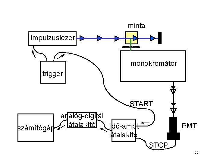 minta impulzuslézer monokromátor trigger START analóg-digitál átalakító idő-ampl. számítógép átalakító PMT STOP 66