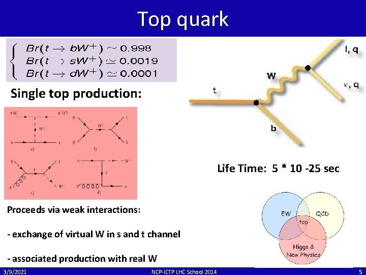 Top quark Single top production: Life Time: 5 * 10 -25 sec Proceeds via