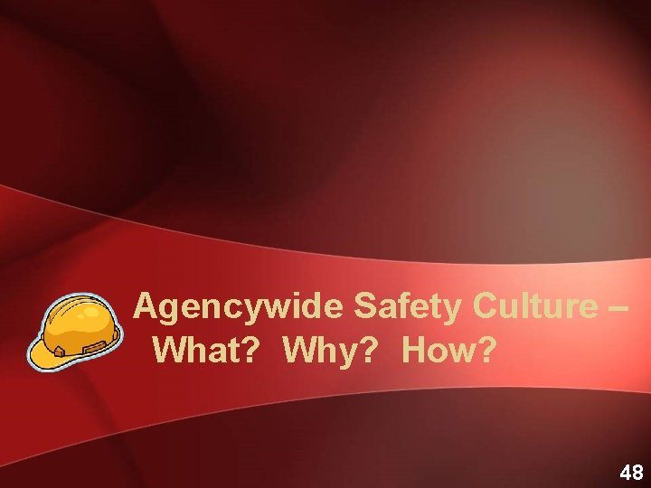 Agencywide Safety Culture – What? Why? How? 48