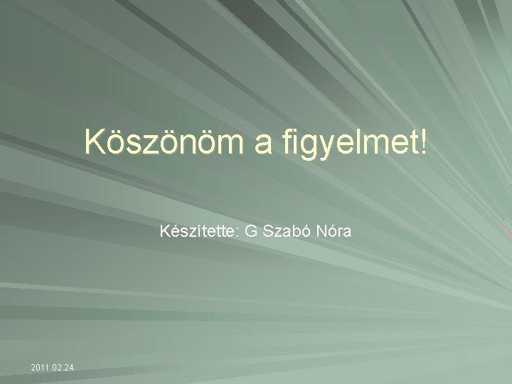 Köszönöm a figyelmet! Készítette: G Szabó Nóra 2011. 02. 24.
