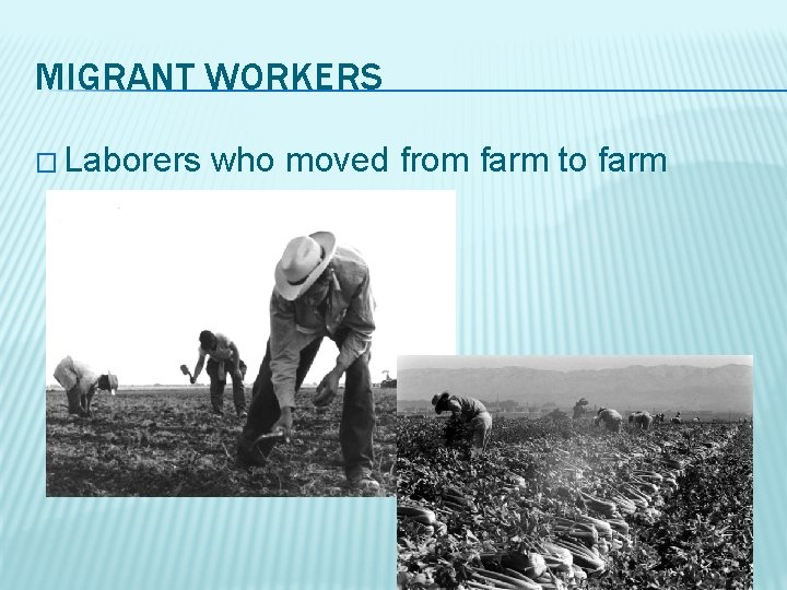 MIGRANT WORKERS � Laborers who moved from farm to farm