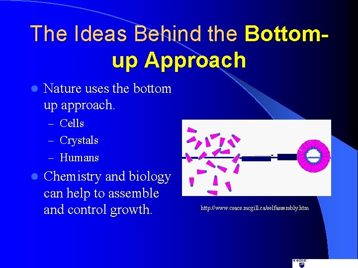 The Ideas Behind the Bottomup Approach l Nature uses the bottom up approach. –