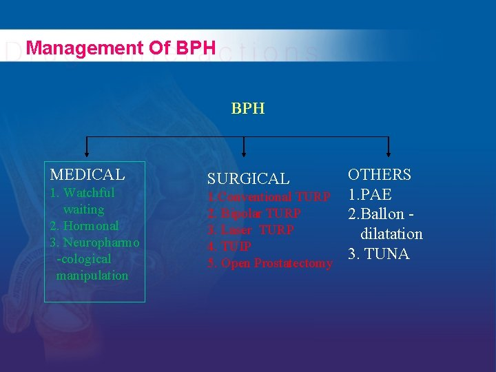 Management Of BPH MEDICAL 1. Watchful waiting 2. Hormonal 3. Neuropharmo -cological manipulation OTHERS
