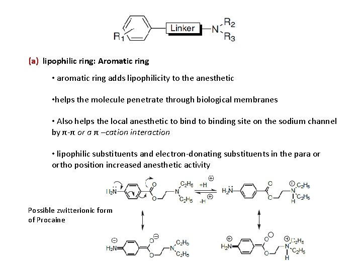 (a) lipophilic ring: Aromatic ring • aromatic ring adds lipophilicity to the anesthetic •