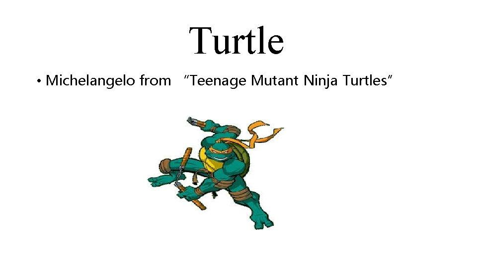 """Turtle • Michelangelo from """"Teenage Mutant Ninja Turtles"""""""