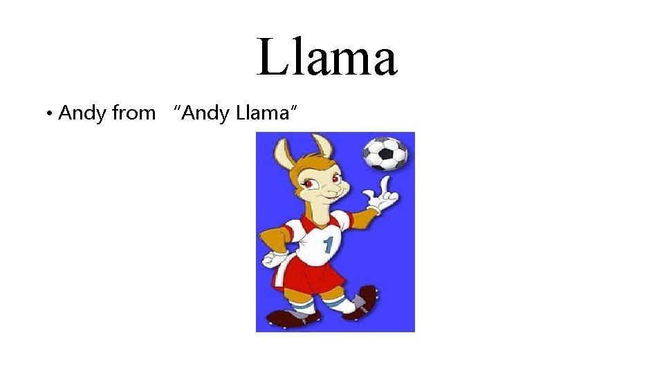 """Llama • Andy from """"Andy Llama"""""""