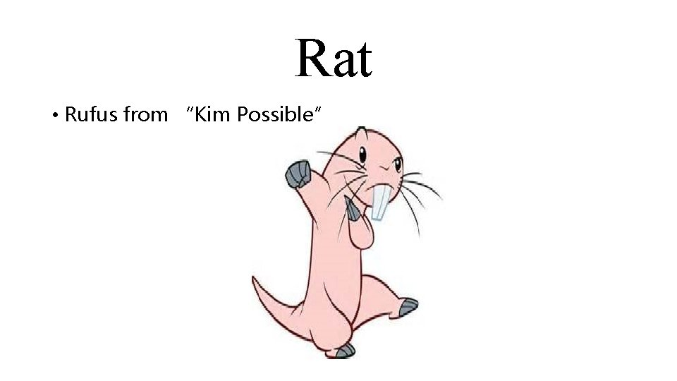 """Rat • Rufus from """"Kim Possible"""""""