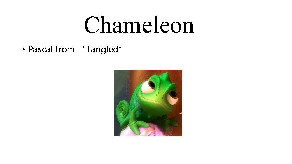 "Chameleon • Pascal from ""Tangled"""