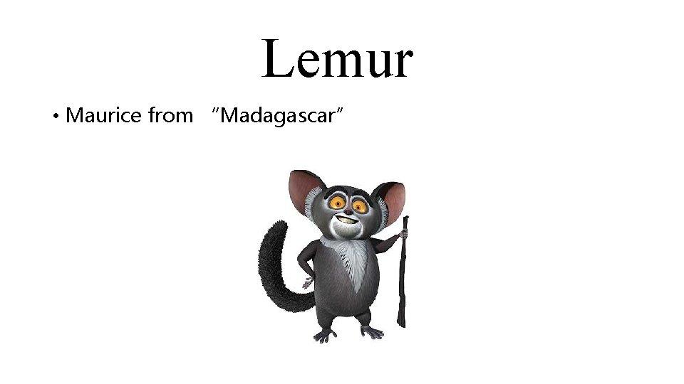 "Lemur • Maurice from ""Madagascar"""