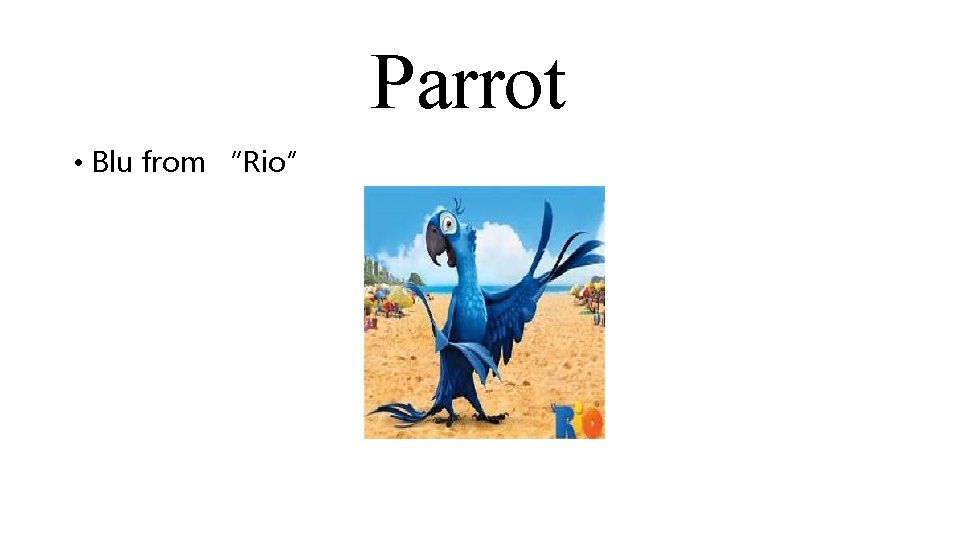 """Parrot • Blu from """"Rio"""""""
