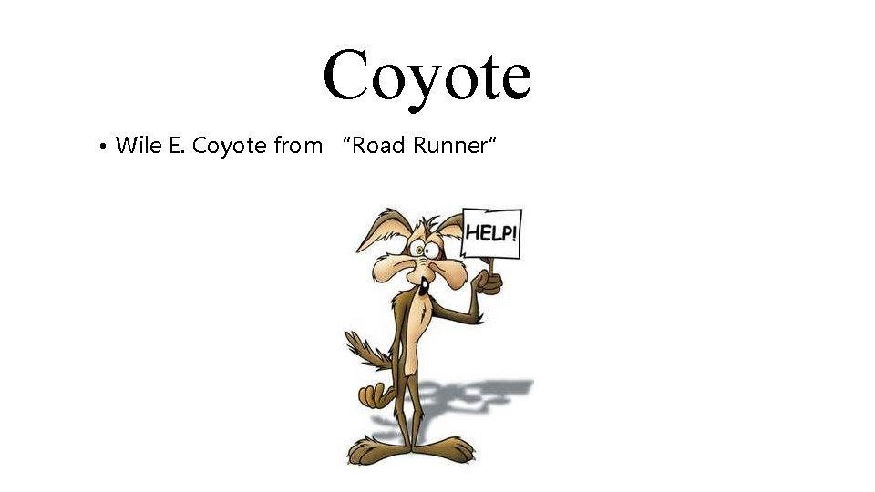 """Coyote • Wile E. Coyote from """"Road Runner"""""""