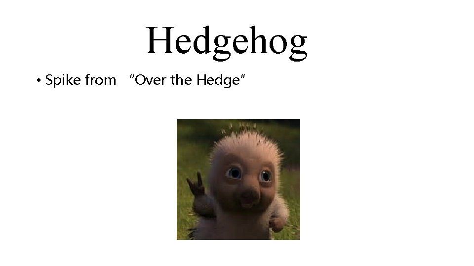 """Hedgehog • Spike from """"Over the Hedge"""""""