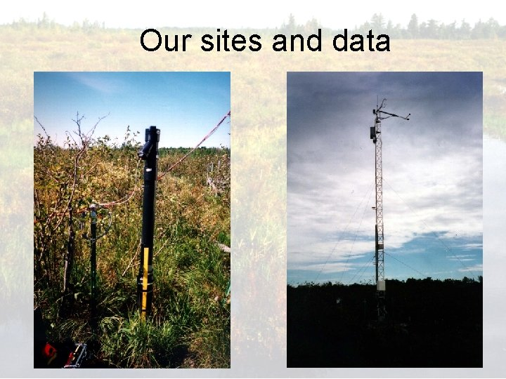 Our sites and data