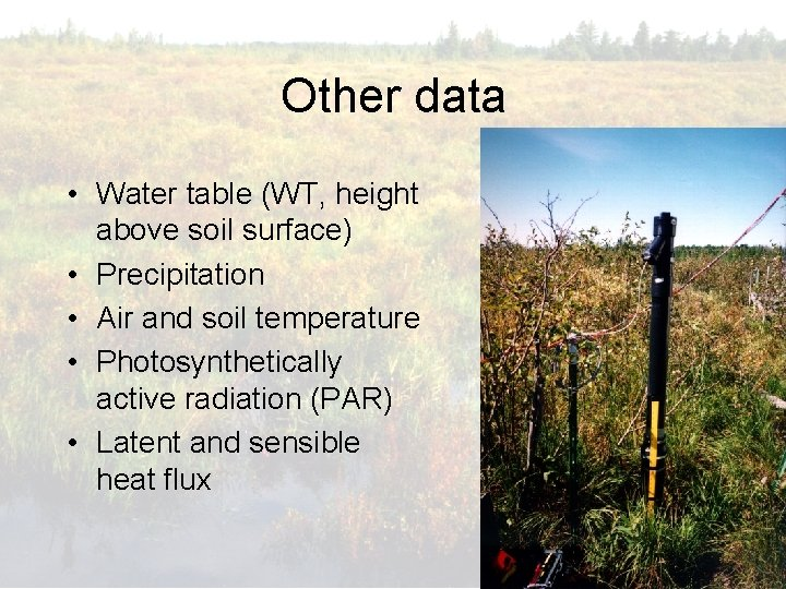 Other data • Water table (WT, height above soil surface) • Precipitation • Air