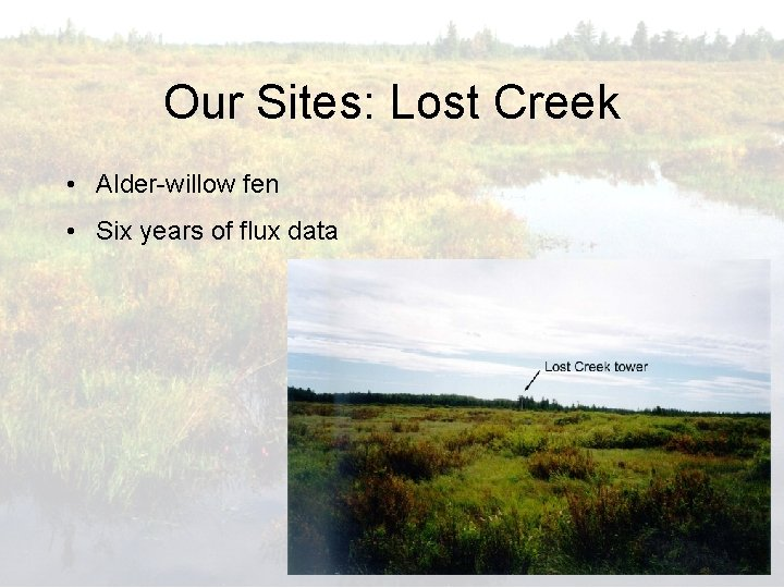 Our Sites: Lost Creek • Alder-willow fen • Six years of flux data