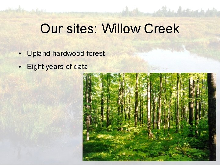 Our sites: Willow Creek • Upland hardwood forest • Eight years of data